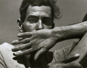 howard_greenberg_1940-dorothea_lange_cotton_picker